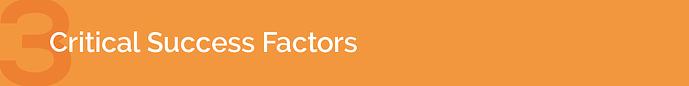 3. Critical Success Factors
