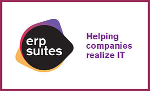 ERP Suites guest blog inset_briteskies