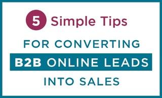 5-tips-convert-b2b-leads-sales.jpg