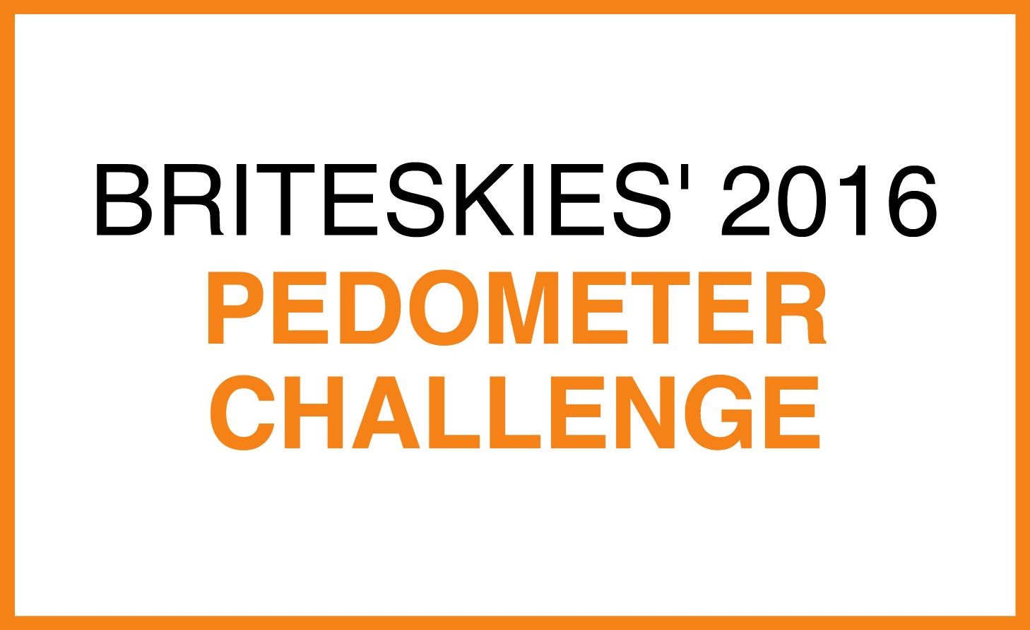 pedometer challenge.png